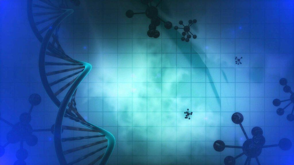Zellen DNA